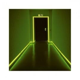 Peinture phosphorescente polyuréthane 1.3l vert